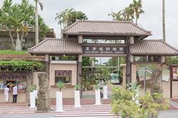 東南植物楽園02